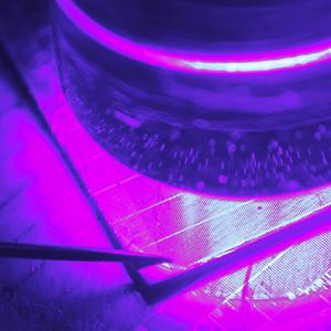 Forschung und Entwicklung - Bestrahlte-Zelle